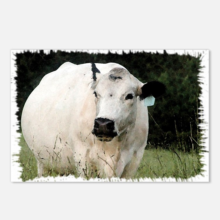 British White Cow at Past Postcards (Package of 8)