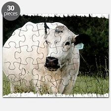 British White Cow at Pasture Puzzle