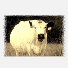 British White Cow - Sepia Postcards (Package of 8)
