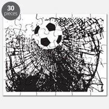 Shattered Glass Ball Puzzle