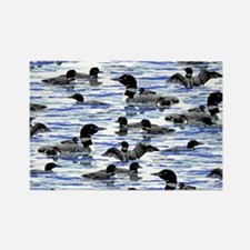 Lots of Loons Rectangle Magnet
