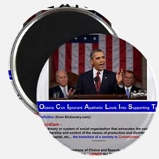 SOCIALIST - The Obama Path - DETAILED - Magnet