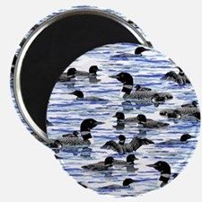 lots of Loons! Magnet
