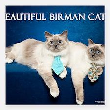 "Birman Cat Calendar Square Car Magnet 3"" x 3"""