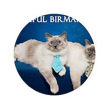 "Birman Cat Calendar 3.5"" Button"