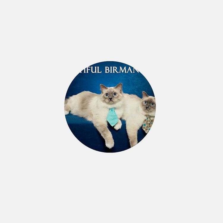 Birman Cat Calendar Mini Button