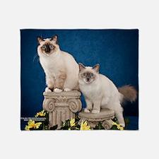 Birman Kitten Calendar Throw Blanket