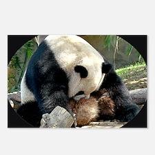 Poor Panda Postcards (Package of 8)