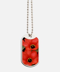 Journal - Root Chakra - Red Tulips Dog Tags