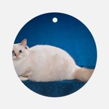 Birman Cat Calendar Round Ornament