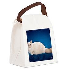 Birman Cat Calendar Canvas Lunch Bag