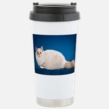Birman Cat Calendar Stainless Steel Travel Mug