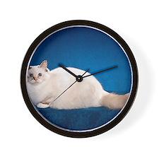 Birman Cat Calendar Wall Clock