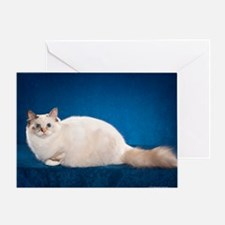 Birman Cat Calendar Greeting Card