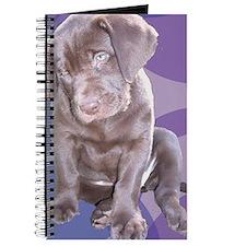 Lab Puppy Journal
