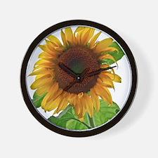 Sunflower in Full Bloom Wall Clock