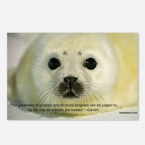 Protect Harp Seals Postcards (Package of 8)