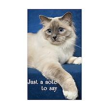 Birman Cat Note Card Decal