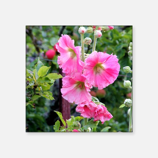 "Notecard---Hollyhock-Pink Square Sticker 3"" x 3"""