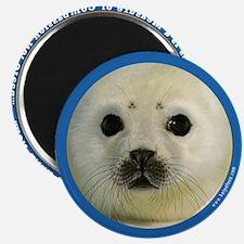 Kai Supports Sea Shepherd Magnet
