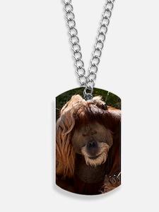 (3) Orang Male 7368 Dog Tags