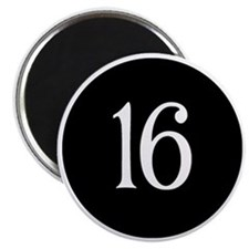 Sweet 16 Black and White Earrings Magnet