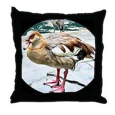 Wet Duck Throw Pillow