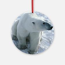 Polar Bear Round Ornament