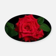Rose, red Oval Car Magnet