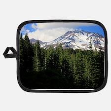 Mount Shasta 16 Potholder