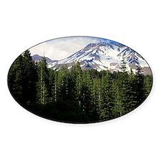 Mount Shasta 16 Decal