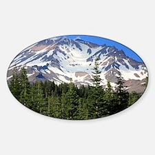 Mount Shasta 11 Sticker (Oval)