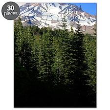 Mount Shasta 15 Puzzle