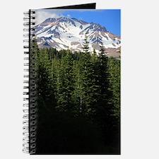 Mount Shasta 15 Journal