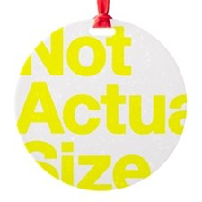 *Not Actual Size Ornament