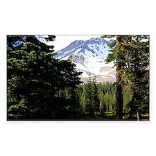 Mount Shasta 18 Decal