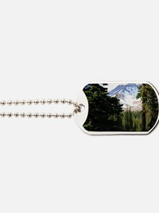 Mount Shasta 18 Dog Tags