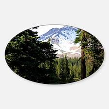 Mount Shasta 18 Sticker (Oval)