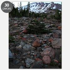 Mount Shasta 62 Puzzle