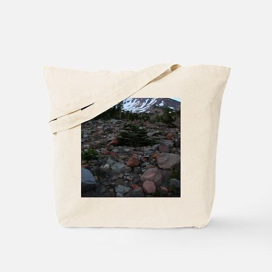 Mount Shasta 62 Tote Bag