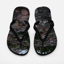Mount Shasta 62 Flip Flops