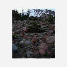 Mount Shasta 62 Throw Blanket