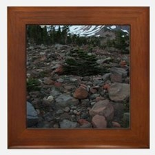 Mount Shasta 62 Framed Tile