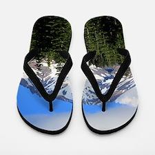 Mount Shasta 9 Flip Flops
