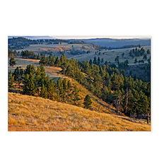Wind Cave Elk Valley Postcards (Package of 8)