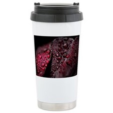 Black Tree Aeonium Rain Drops L Travel Mug
