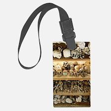 Hominid skull casts Luggage Tag