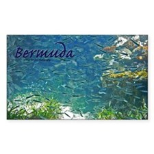 Bermuda Decal