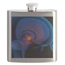 Hypothalamus in the brain, artwork Flask