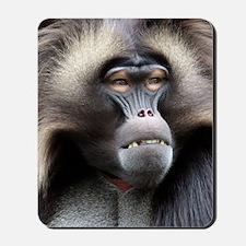Gelada Baboon Mousepad